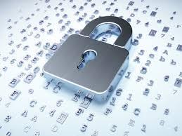 Pequeñas empresas le apuestan a la seguridad cibernética